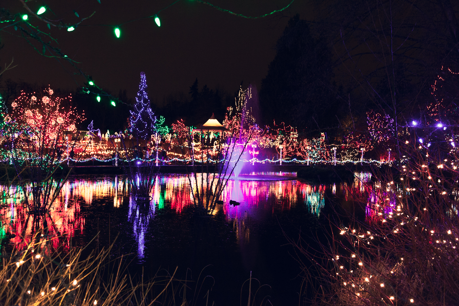 Christmas 2012 Van Dusen Gardens Lights-1611-Edit